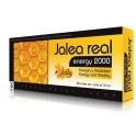 Tegor Jalea Real Energy 2000 20 viales x 10 ml