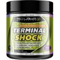 Scilabs Nutrition Terminal Shock 275,8 gr