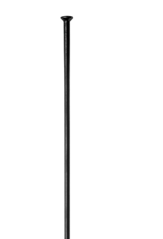Dt Swiss Radio Recto Dt Competition Straight Pull 2.0x1.8x2.0x303 Mm Negro